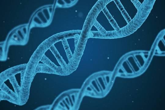 ВКазани благодаря анализу ДНК спустя 8 лет установили личность насильника