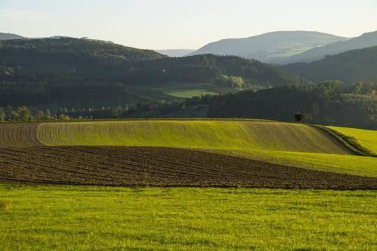 Распределение земель для многодетных семей вказанских Дербышках начнется осенью